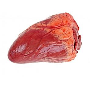 Inimă de mânzat